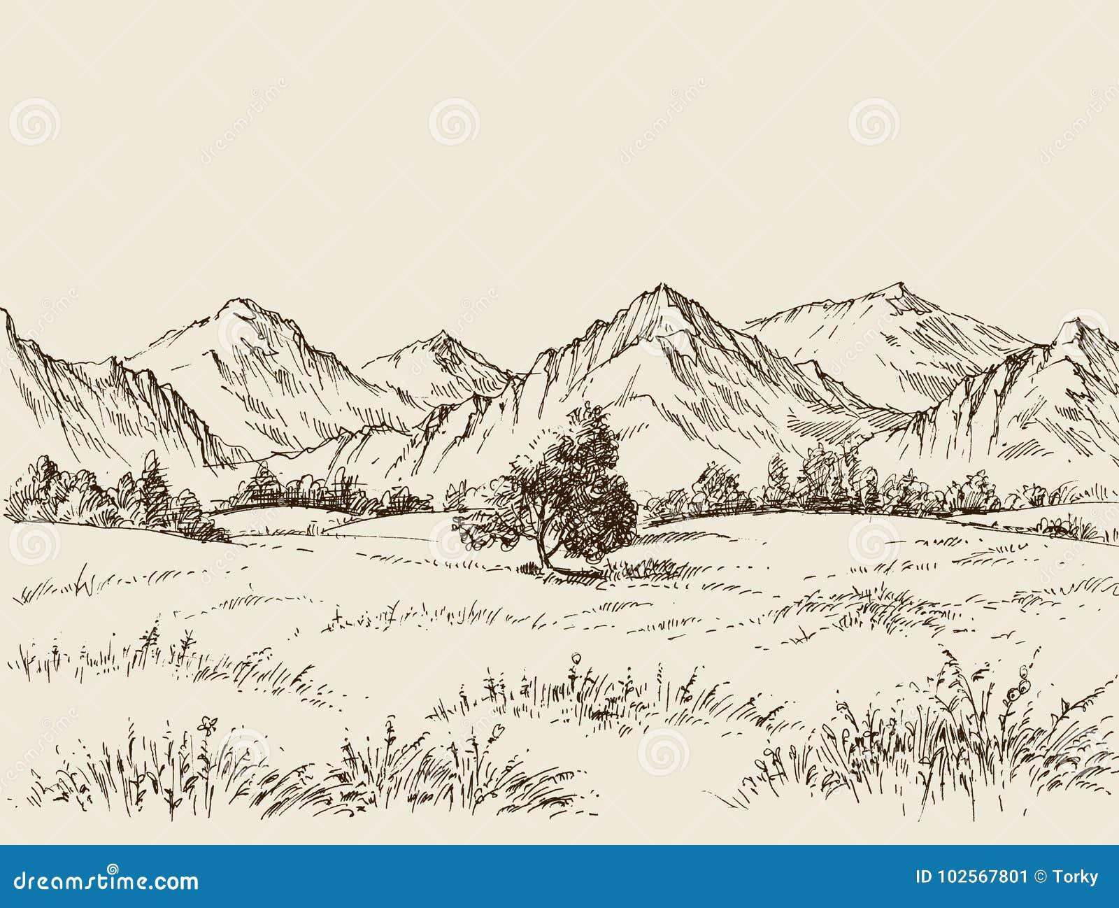 Dessin De Prairie Et De Montagnes Illustration De Vecteur
