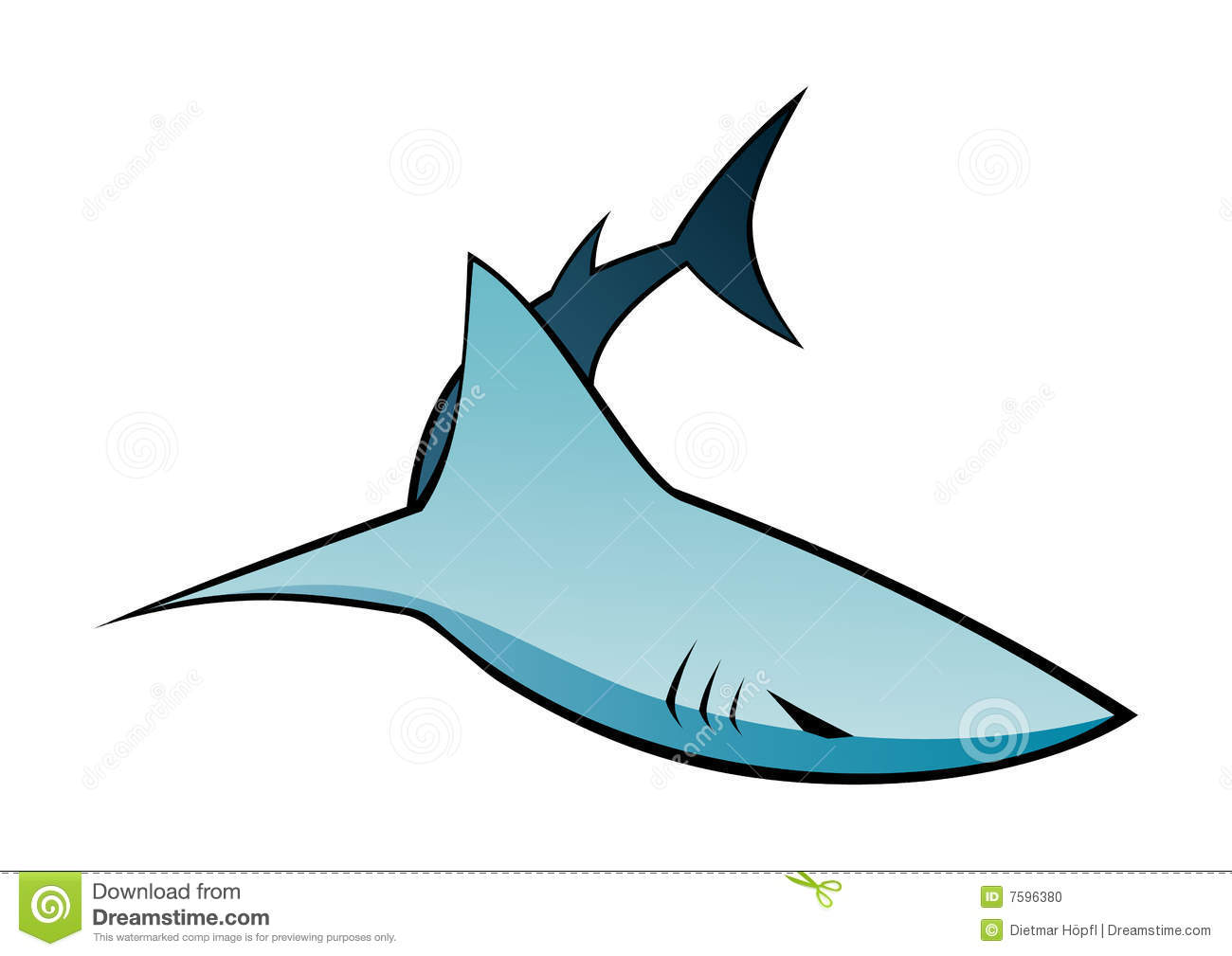 Dessin de requin photo stock image 7596380 - Dessin de requin blanc ...