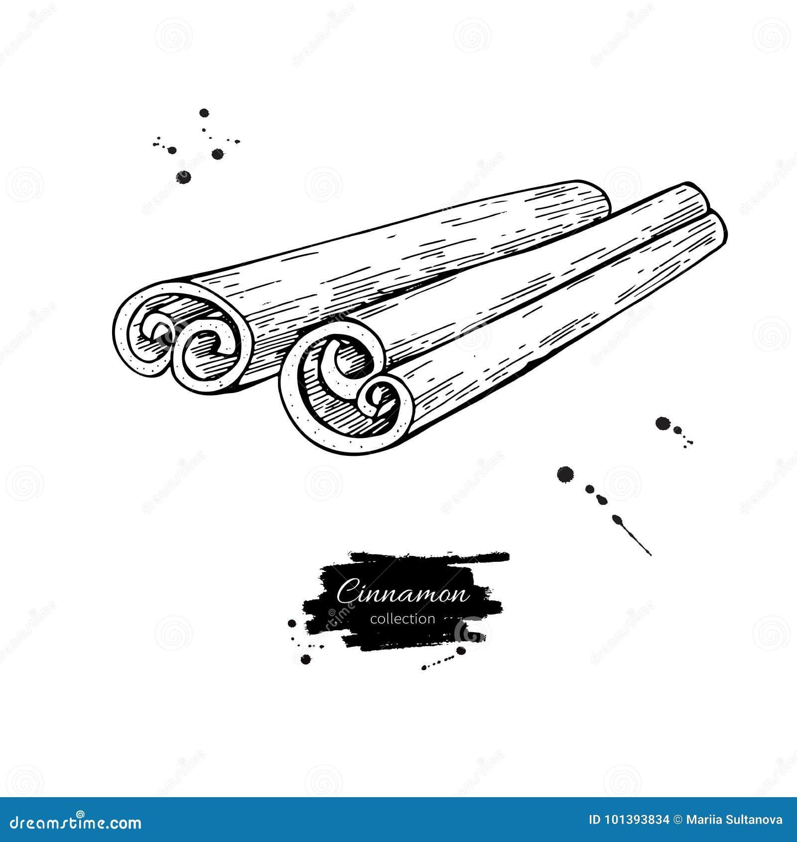 Dessin De Vecteur De Bâton De Cannelle Croquis Tiré Par La