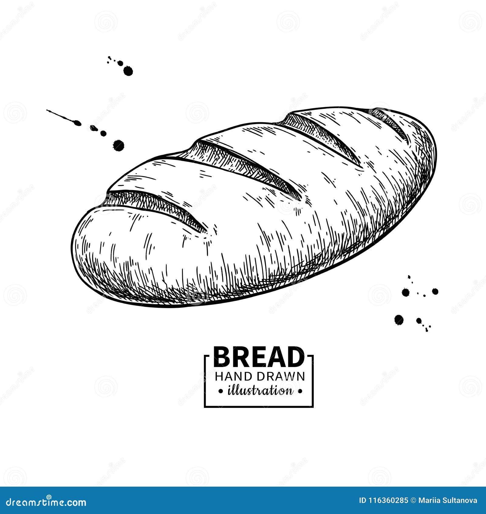 Dessin De Vecteur De Pain Croquis De Produit De Boulangerie