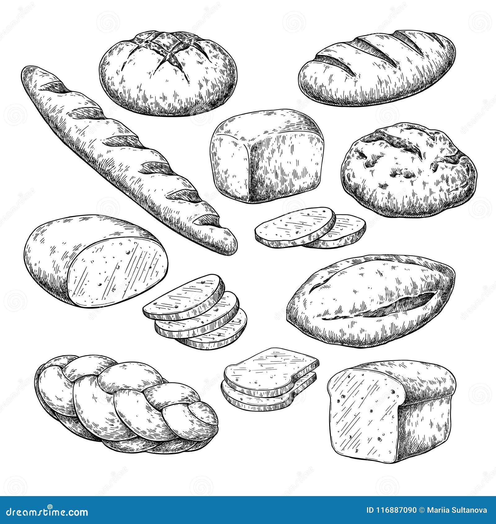 Dessin Boulangerie dessin de vecteur de pain croquis de produit de boulangerie