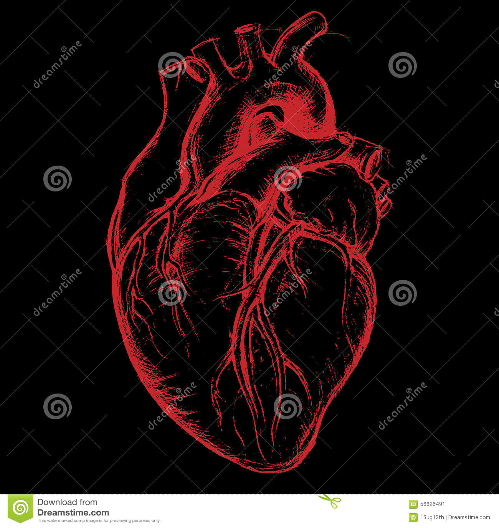 Dessin humain de coeur illustration de vecteur - Dessin coeur humain ...