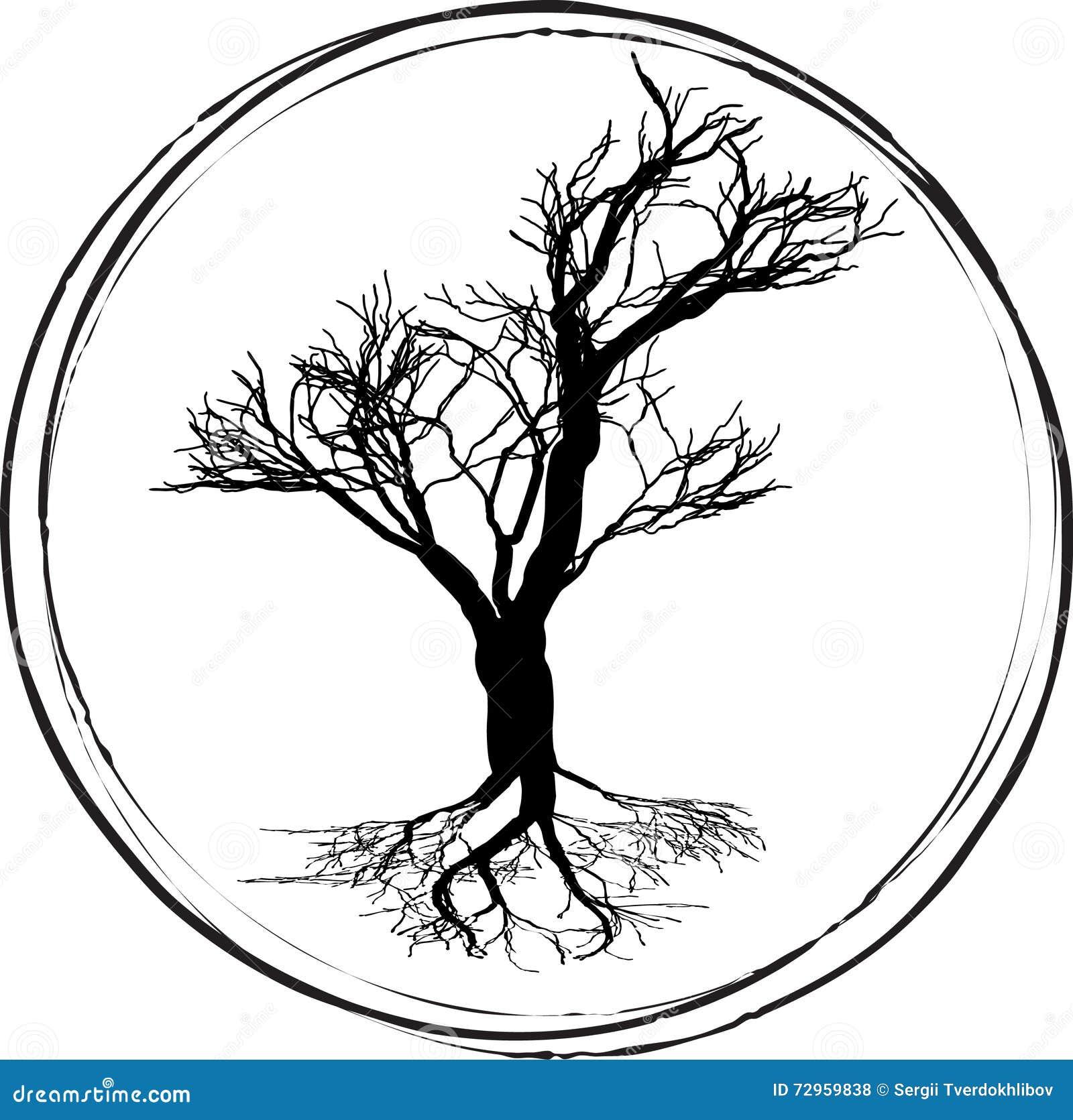 dessin noir et blanc d 39 arbre feuilles caduques silhouette noire sur un fond blanc illustration. Black Bedroom Furniture Sets. Home Design Ideas