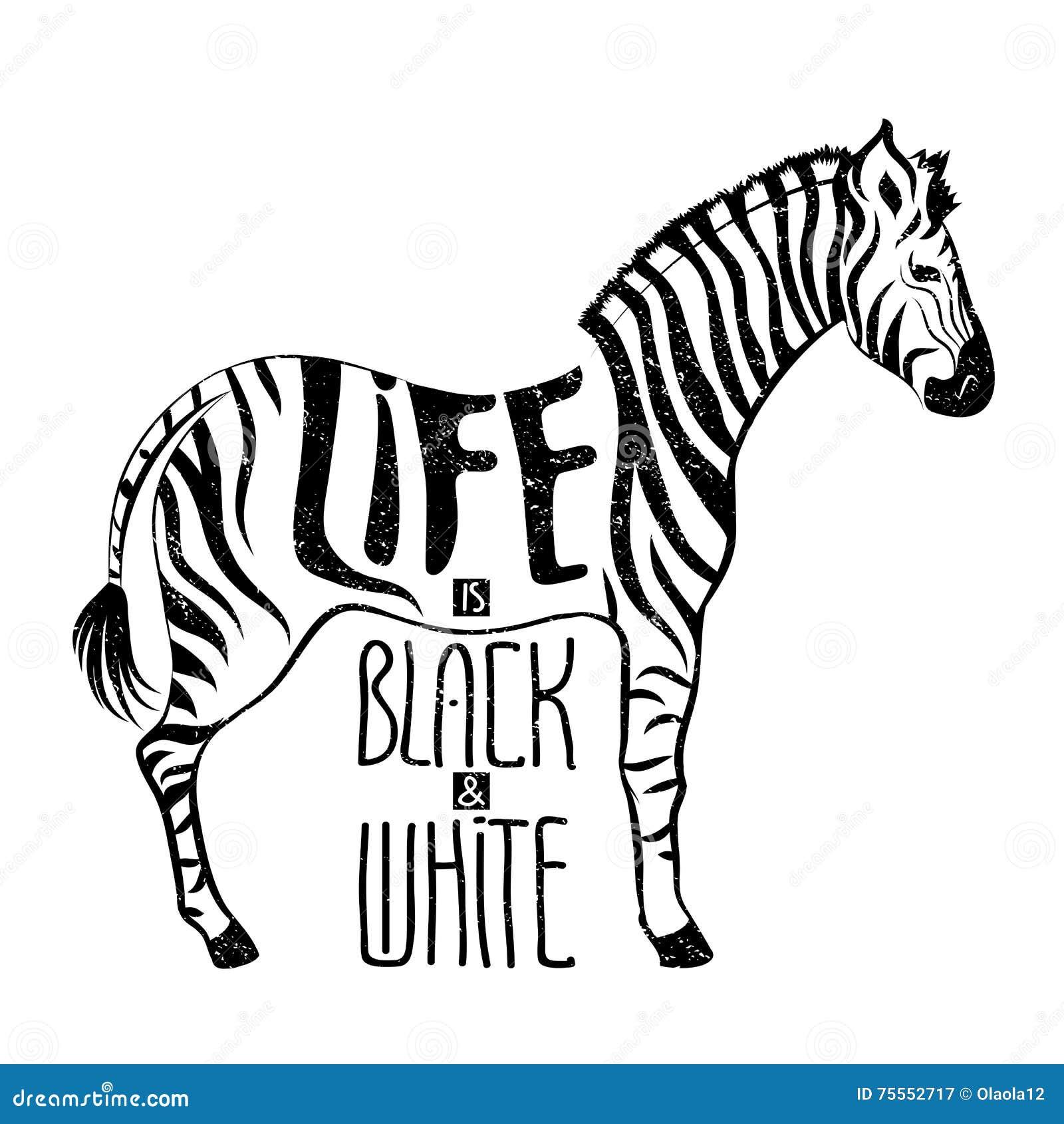 Dessin Noir Et Blanc De Concept De Zebre Illustration De Vecteur