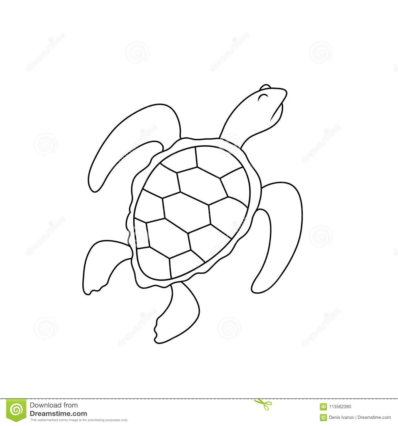 Dessin simple d 39 une tortue avec une expression hautaine - Tortue en dessin ...