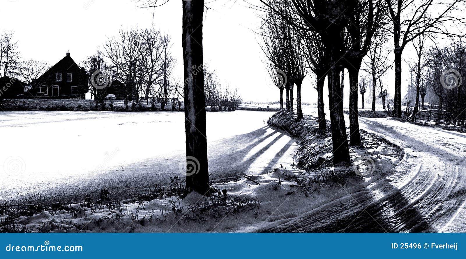 Dessin Winterland de FV