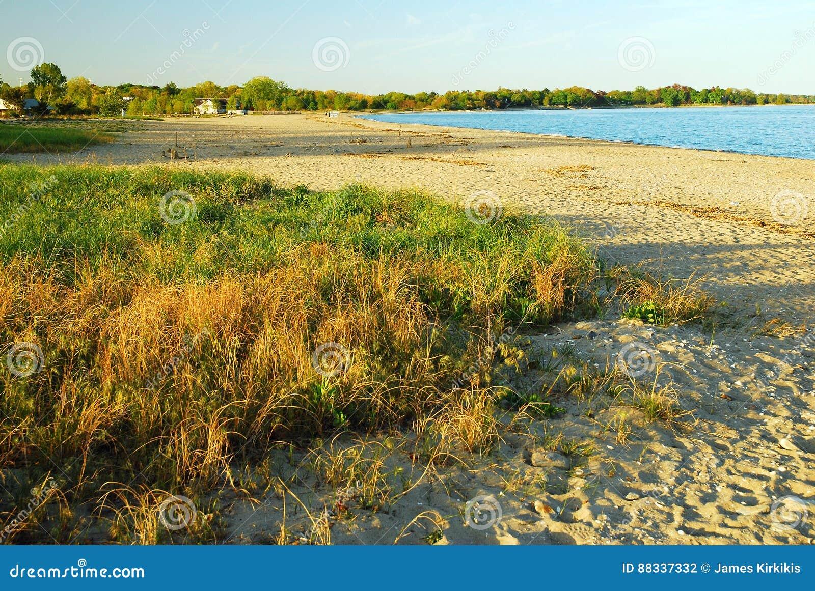 Dessrted Beach