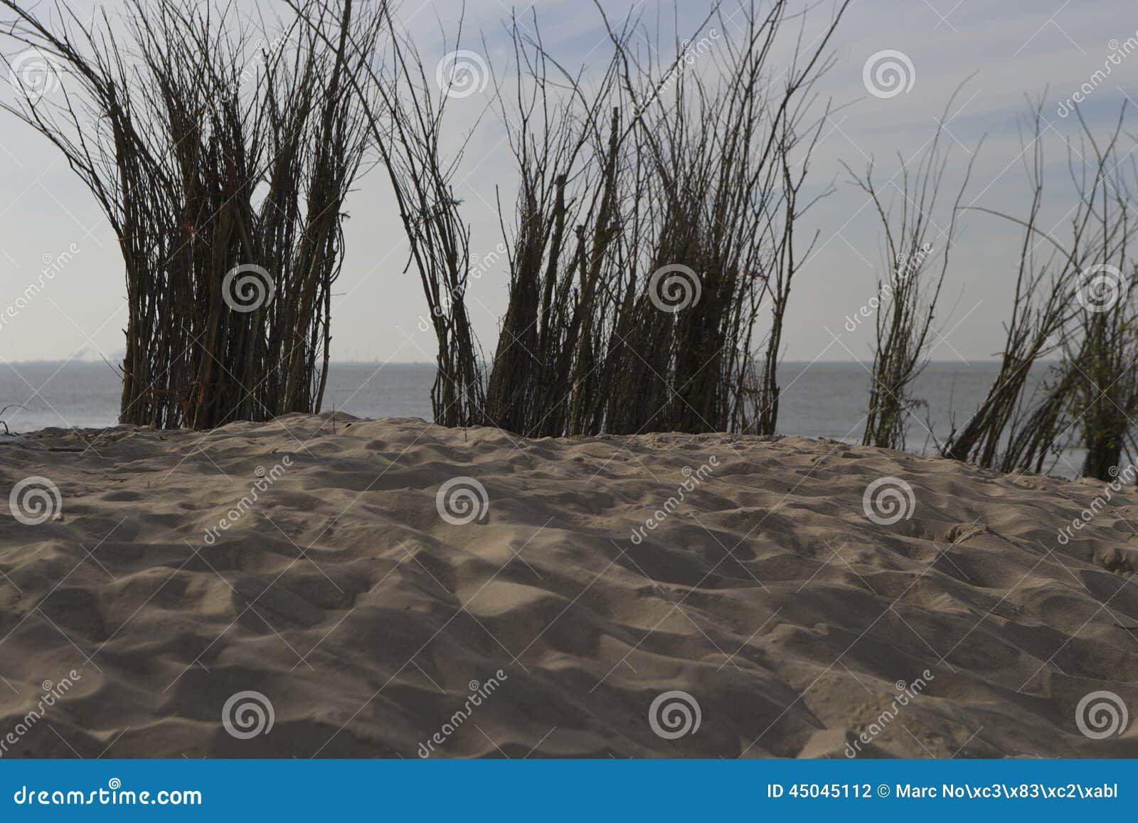 Dessus de la Mer du Nord de colline de sable