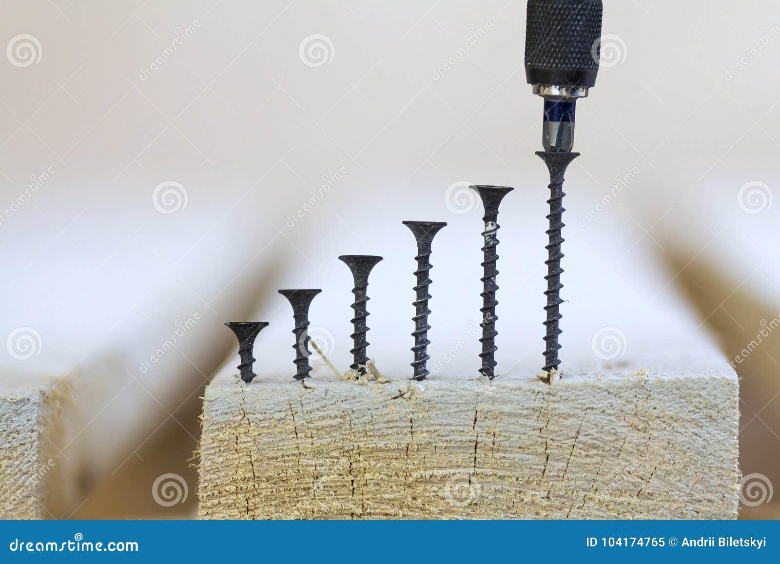Destornillador y algunos tornillos en el primer borroso del fondo Posi