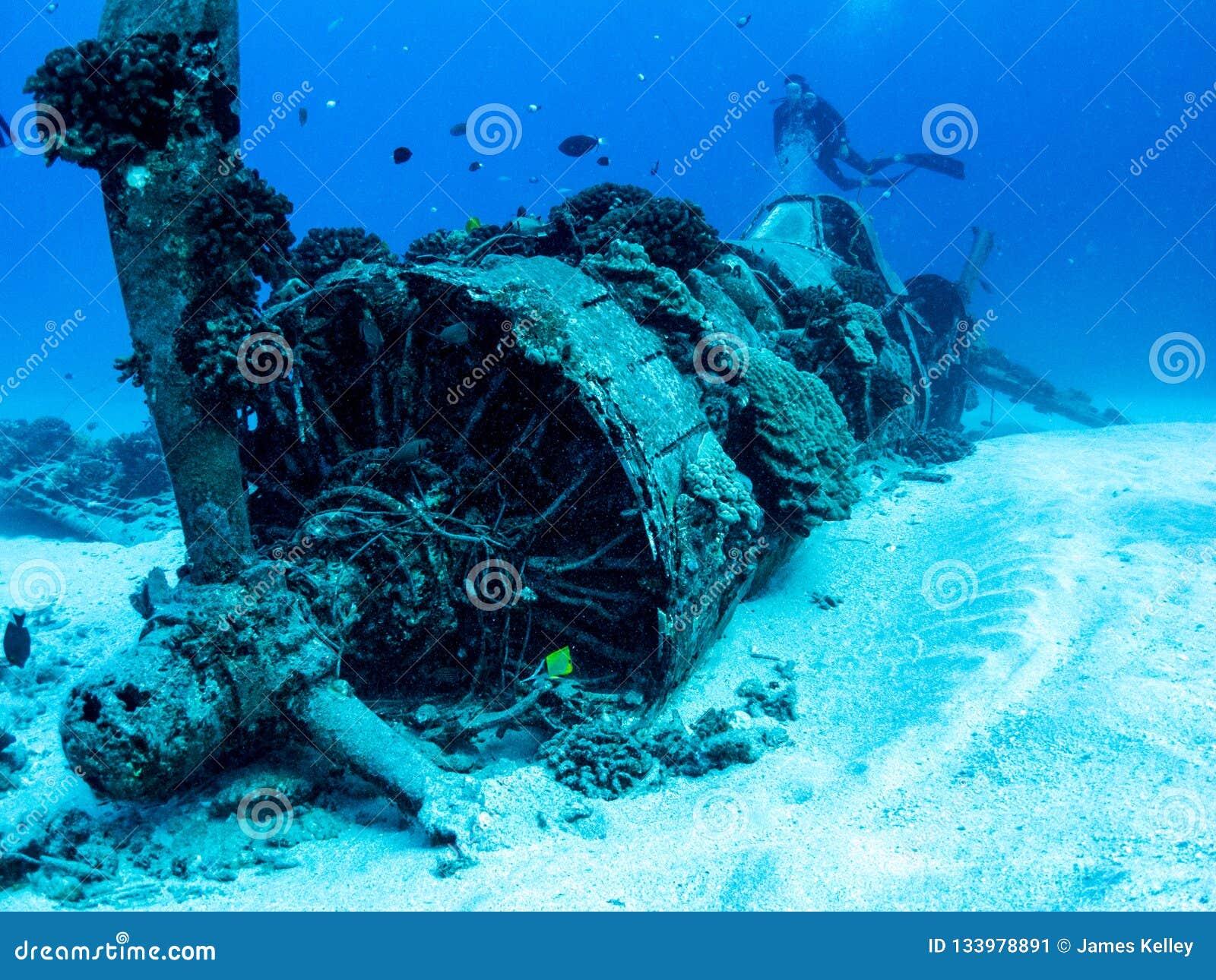 Destruição plana do corsário da guerra mundial 2 - mergulho autônomo em Oahu, Havaí