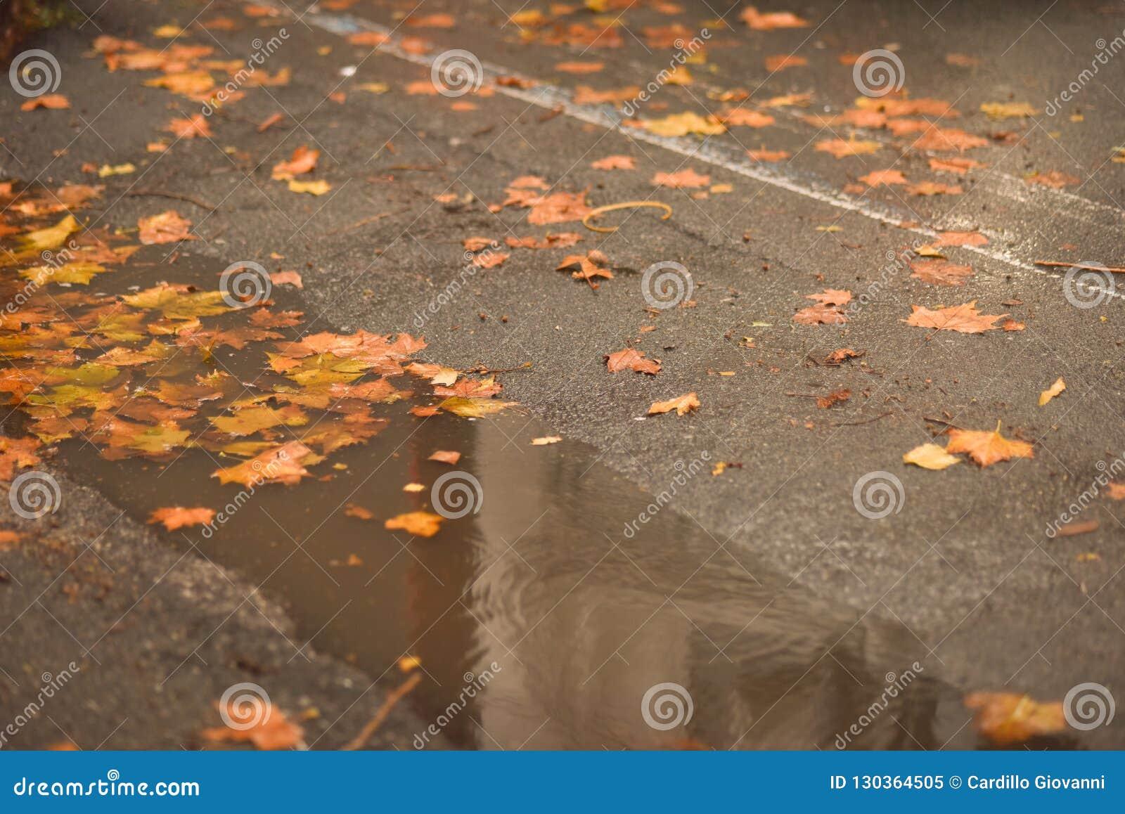 Deszcz tworzył kałuże w dziurach asfalt