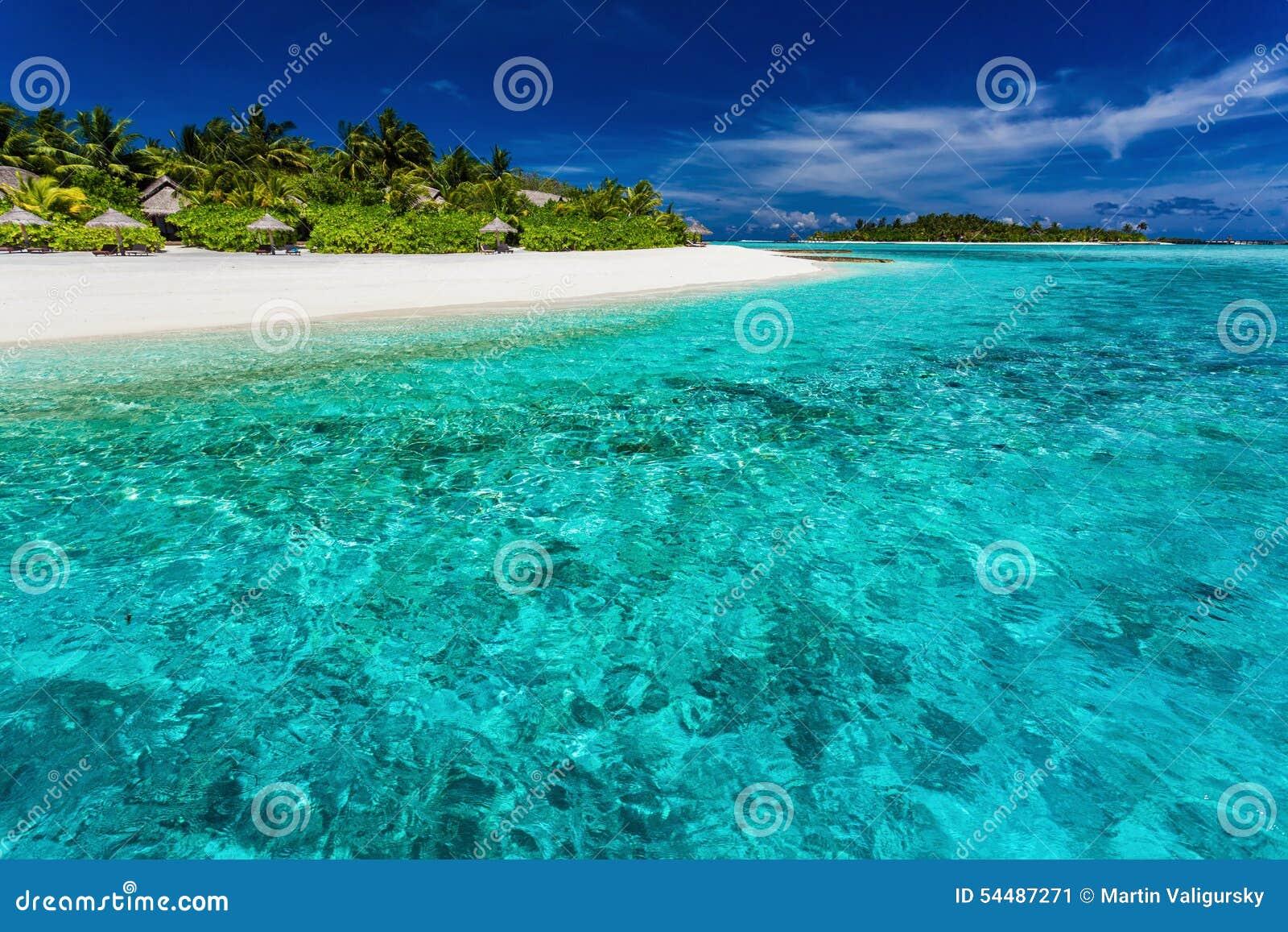 bästa snorklingen maldiverna