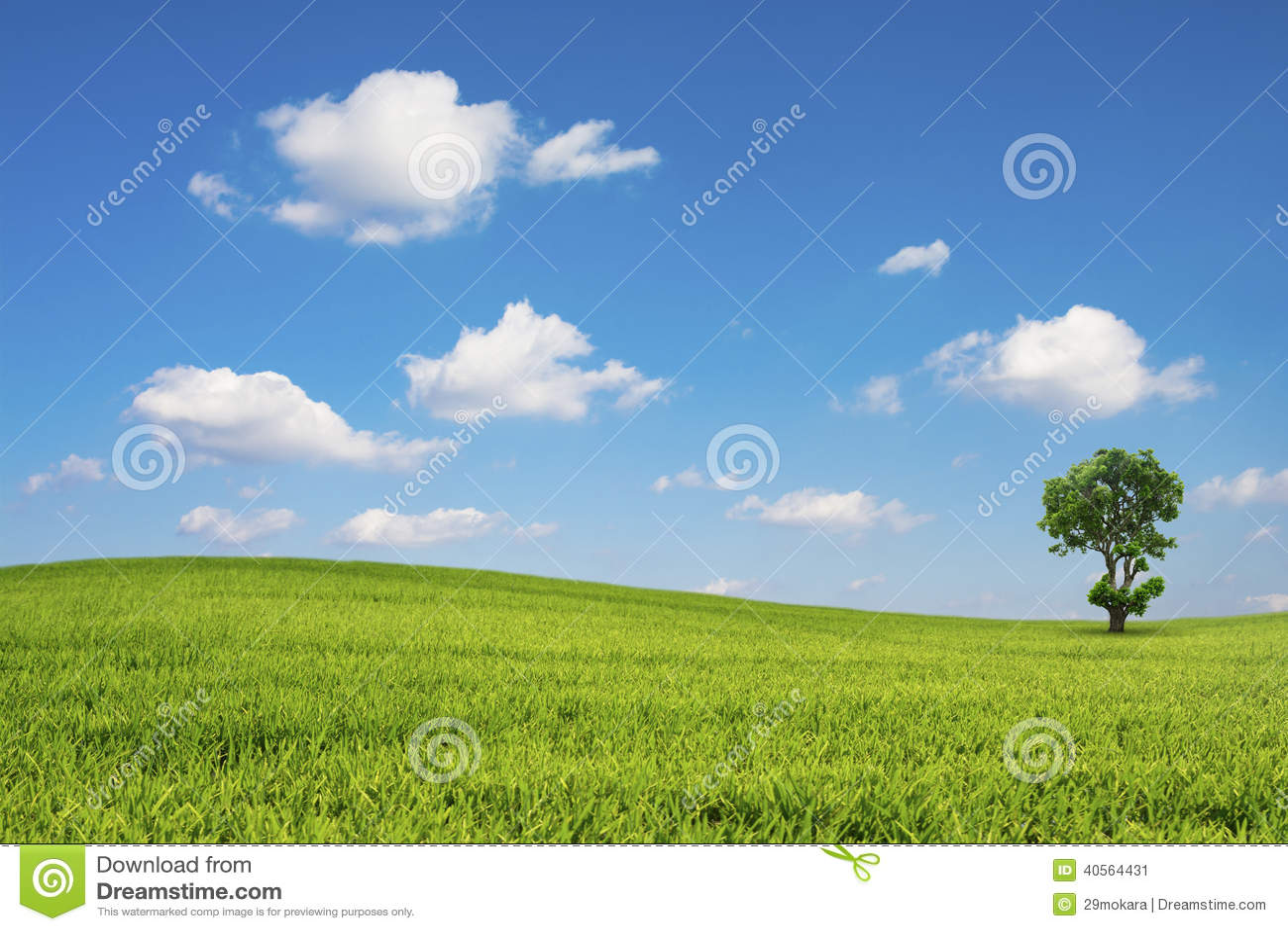 Det gröna fältet och trädet med blå himmel fördunklar