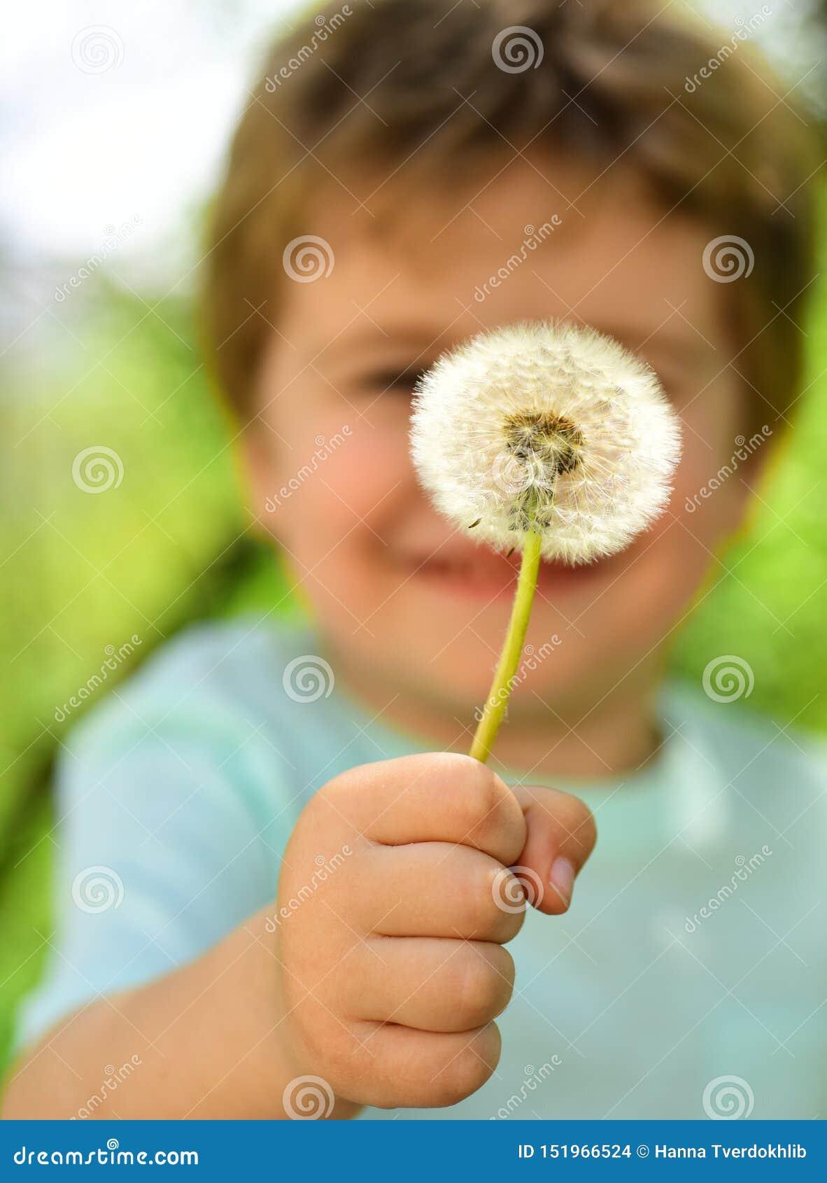 Det gulliga barnet visar en maskrosblomma, en vår och en härlig natur Barndom i natur badningpojkegl?dje little havssommar H?rlig