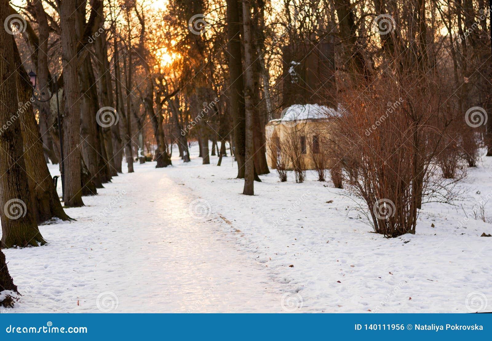 Det härliga vinterlandskapet av parkerar vandringsledet på solnedgångbakgrund och avlövade träd Time för att gå med familjen, hun