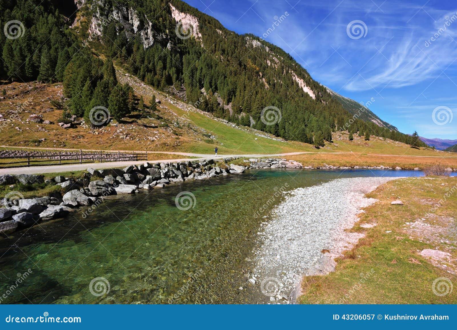 Download Det Kristallklara Genomskinliga Vattnet Fotografering för Bildbyråer - Bild av gräs, skog: 43206057
