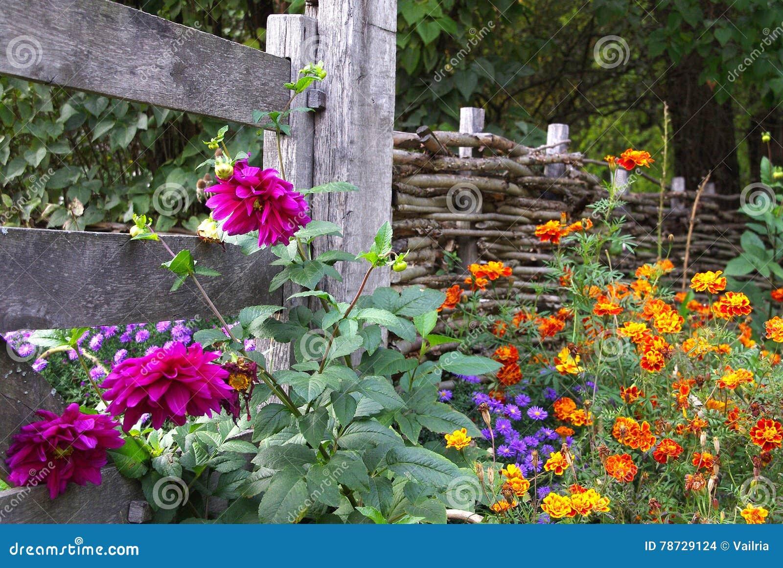 Det lätta höstkortet redigerar blommor som ferie ändrar till vektorn