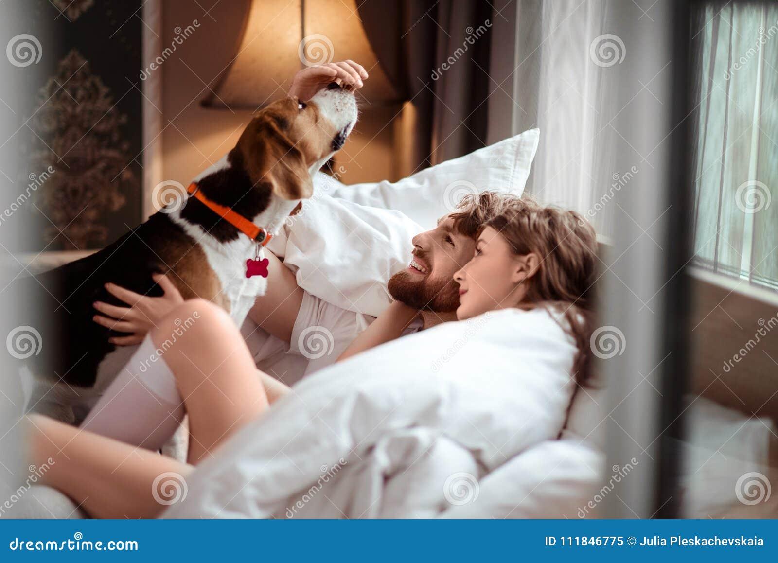 Det lyckliga familjparet ligger i säng, spelar med den favorit- hunden, omsorg om djur, spenderar extra- tid i hemtrevligt sovrum