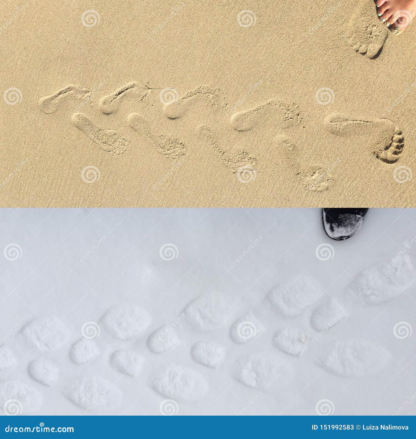 Det motsatt av sand på stranden och insnöat skogen