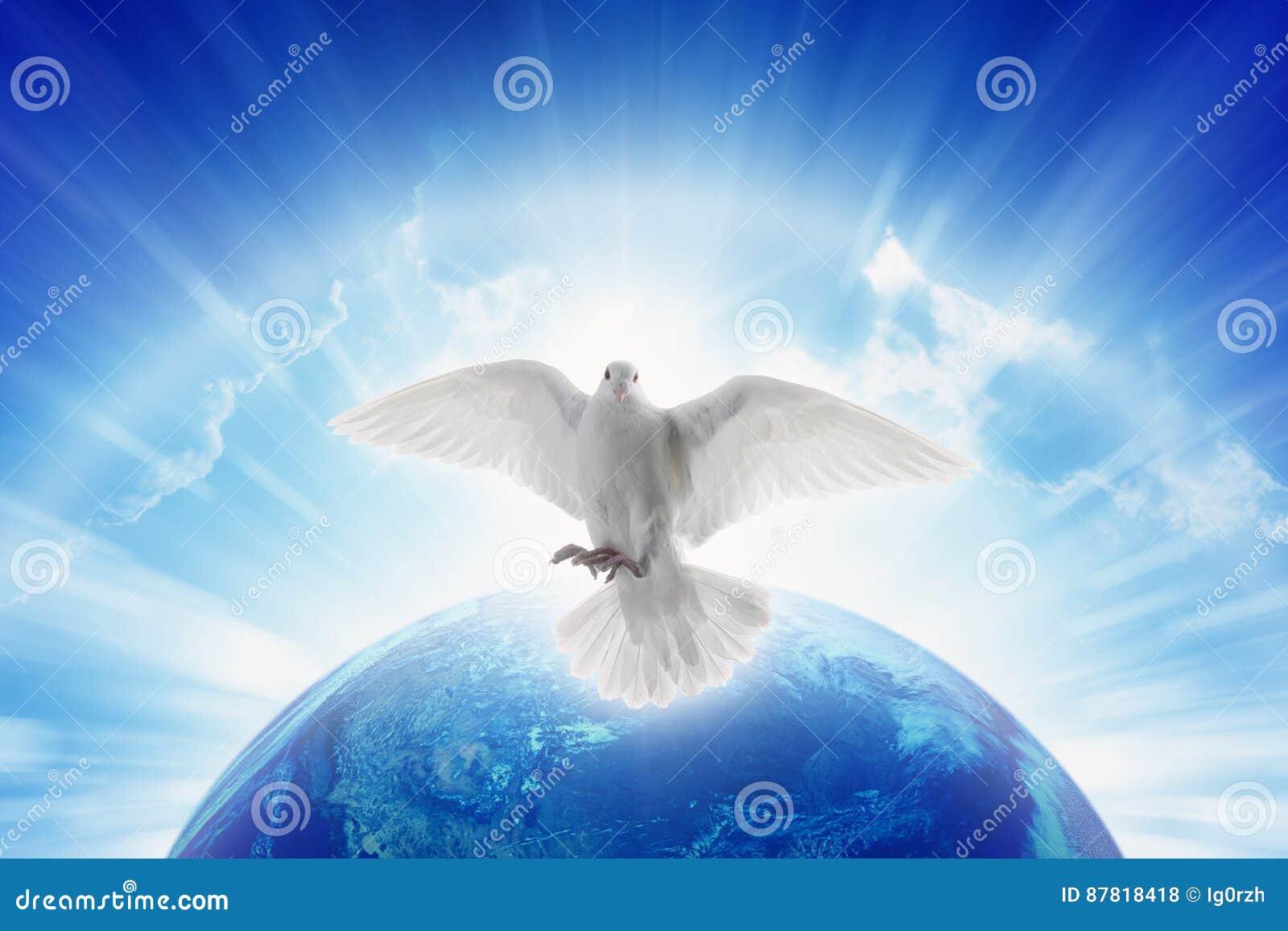 Det vita duvasymbolet av förälskelse och fred flyger ovanför planetjord