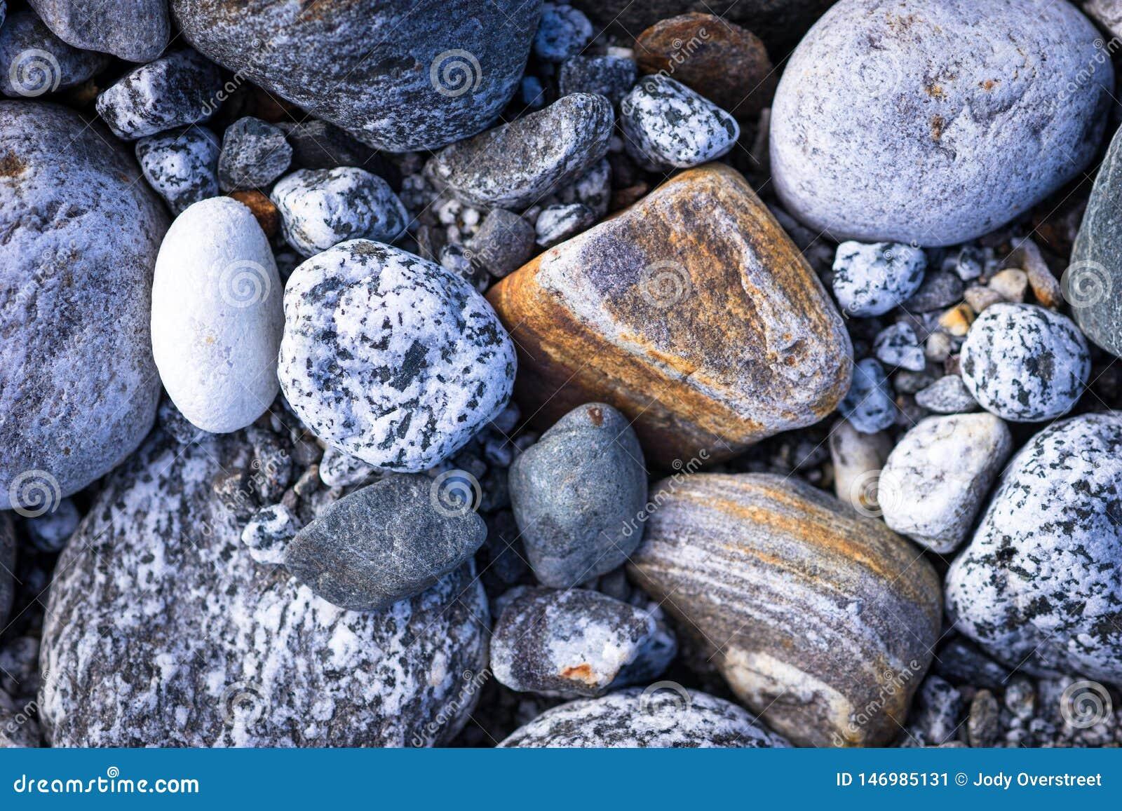 Detail of Assorted Beach Rocks