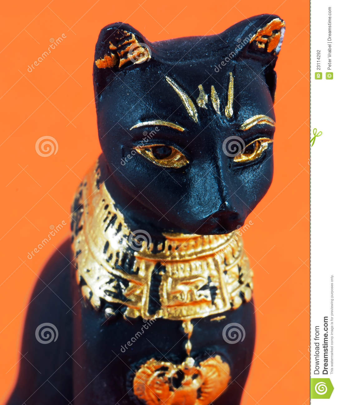 Detail of black egyptian cat