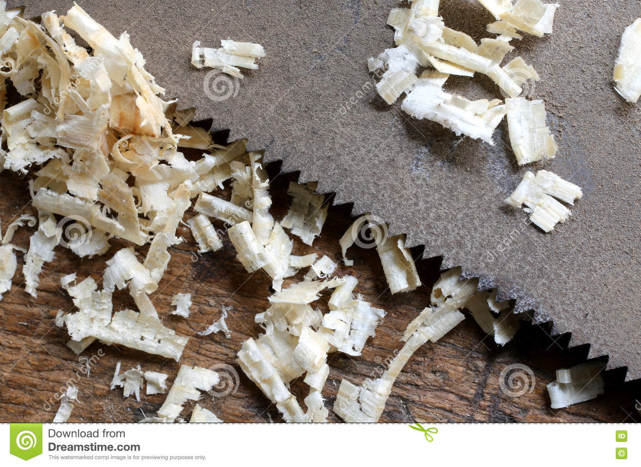 detail of the blade of a saw toothed and sawdust chippings