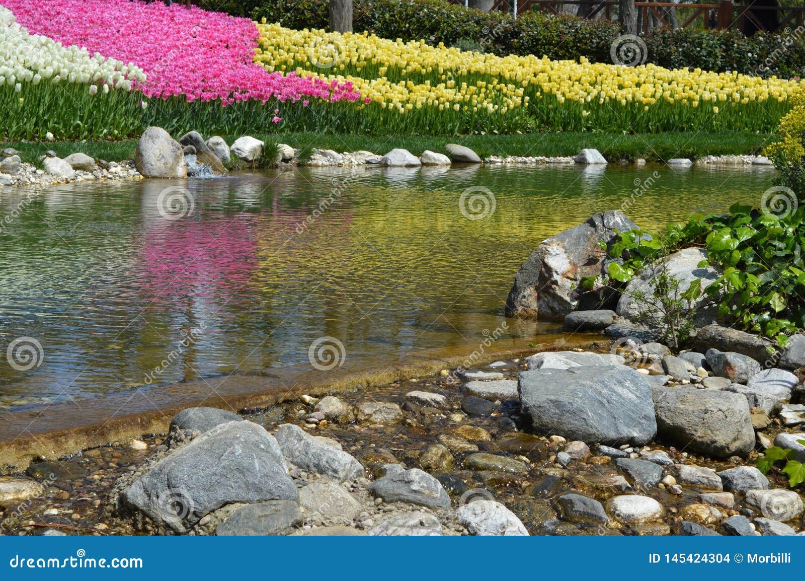 Detail in Emirgan-Park, im kleinen See und in den bunten Blumen im Hintergrund