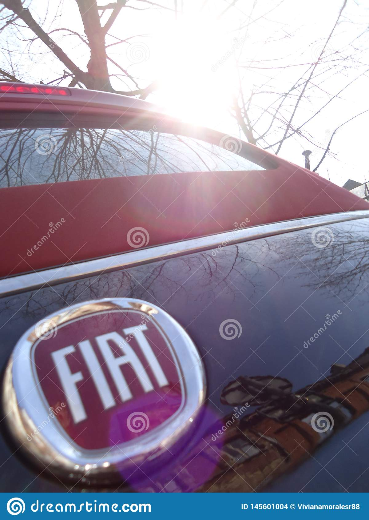 Detail from Fiat 500 black and red