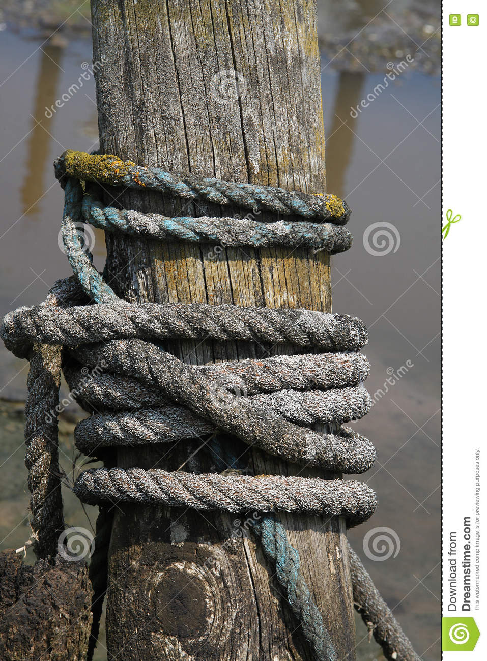 Wooden Post Texture detail of old wooden post with rope stock photo - image: 73509445