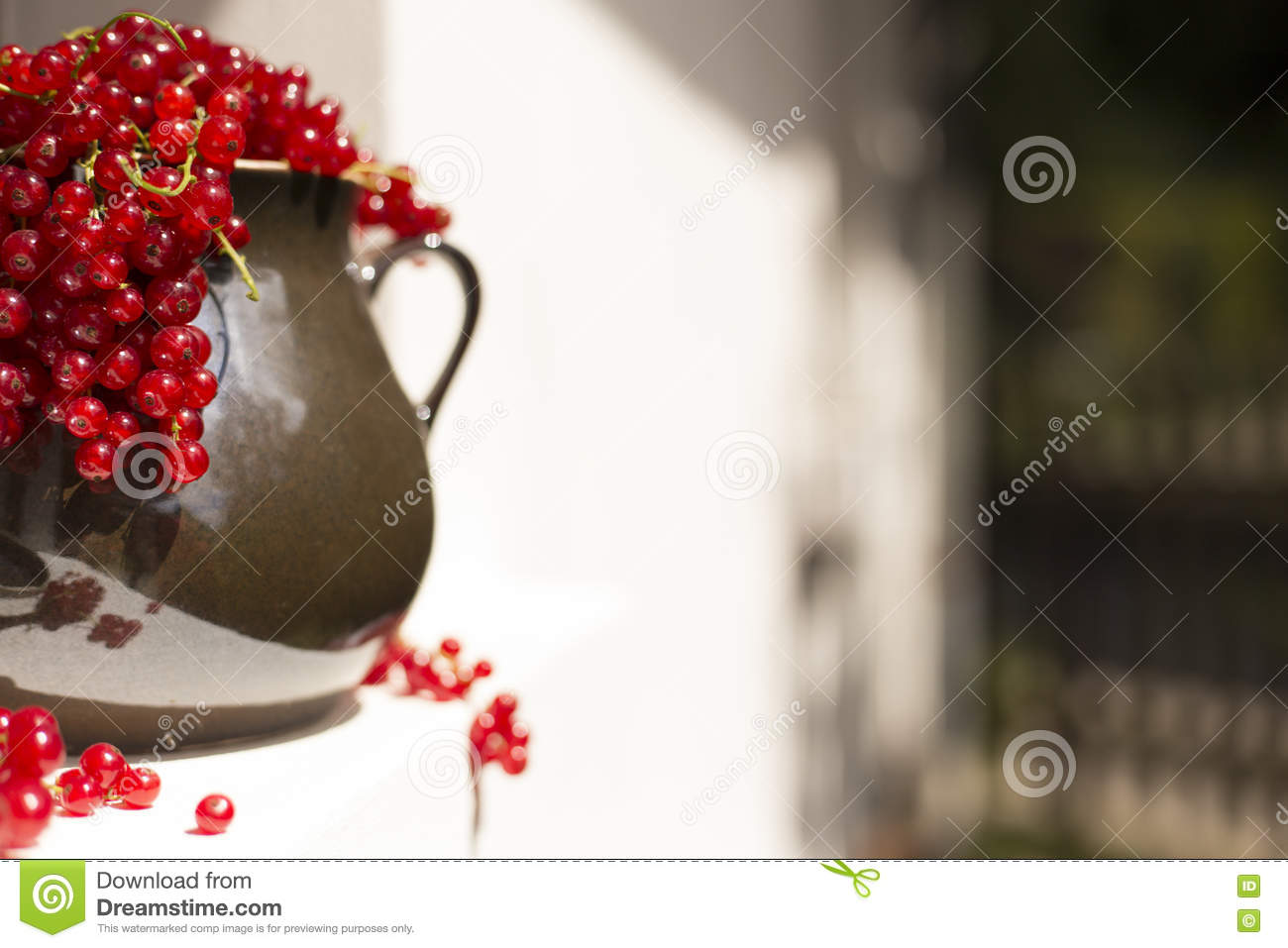 Detail of Pitcher/jug of redcurrant on a direct sunlight on a window