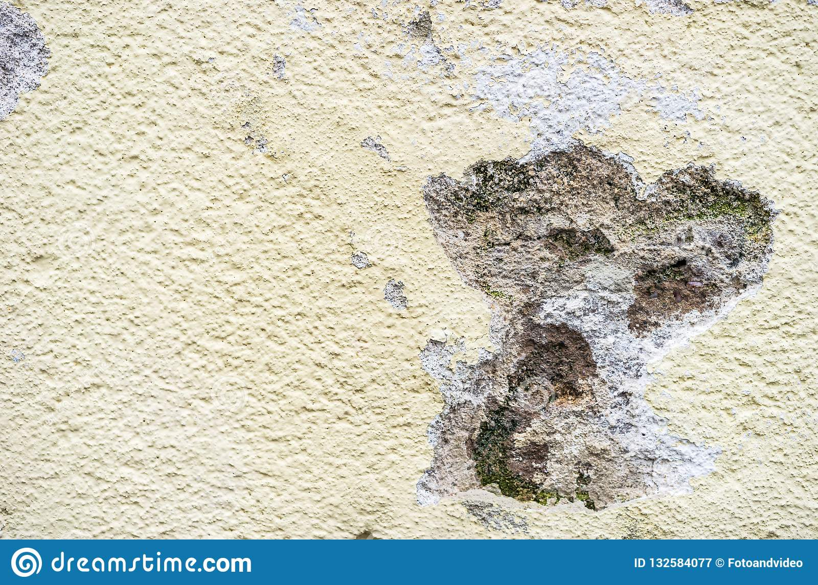 Detail view of mold in a house wall facade, outdoors