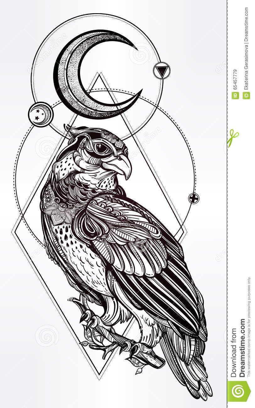 Detailed Hand Drawn Bird Of Prey. Stock Vector ...