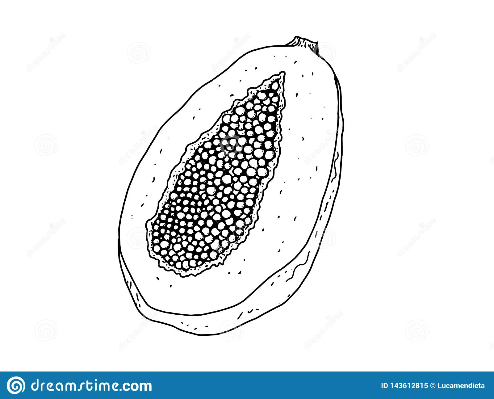 Pictures Of Papaya To Color