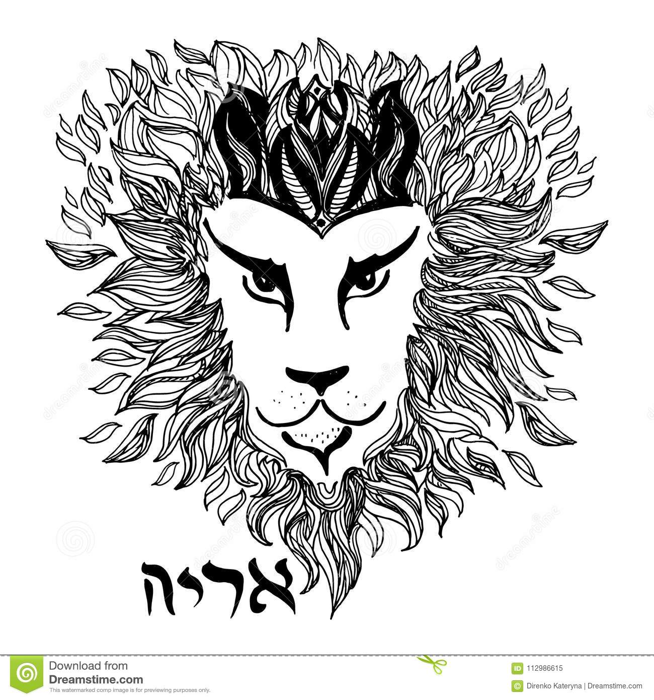 Detailed Lion in style engraving and symbol word Lion in Hebrew. Hand decorative font.
