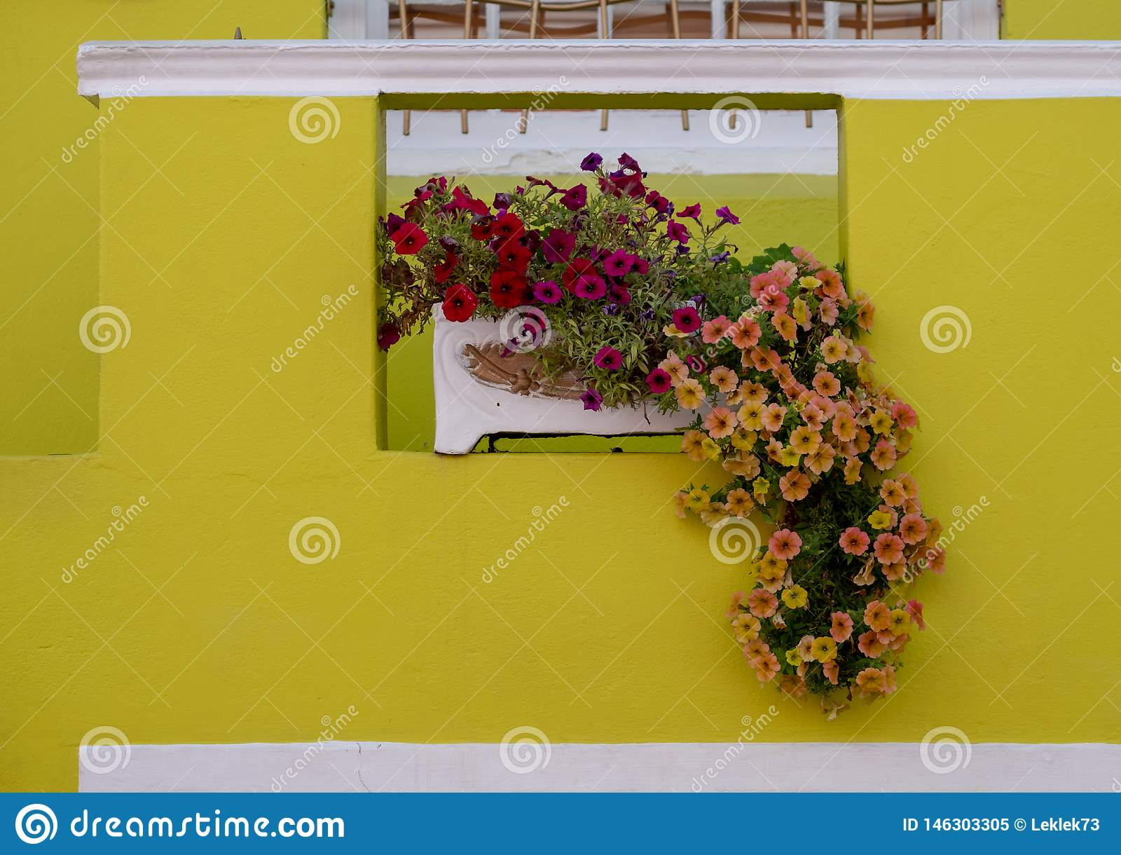 Detailed photo of house with flowers outside in the Malay Quarter, Bo Kaap, Cape Town, South Africa