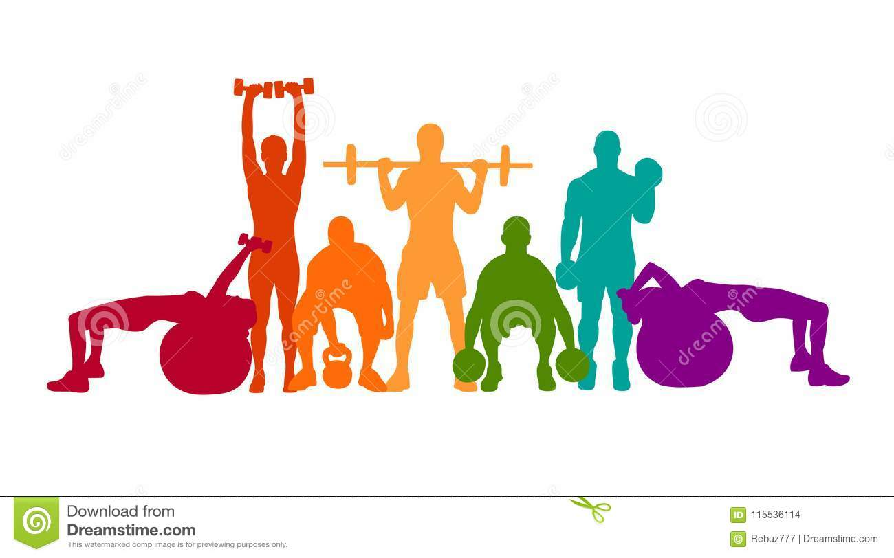 Detailed Vector Illustration Silhouettes Strong Rolling People Set Girl And Man Sport Fitness Gym Body Building Workout Powerlifti Stock Vector Illustration Of Activity Design 115536114