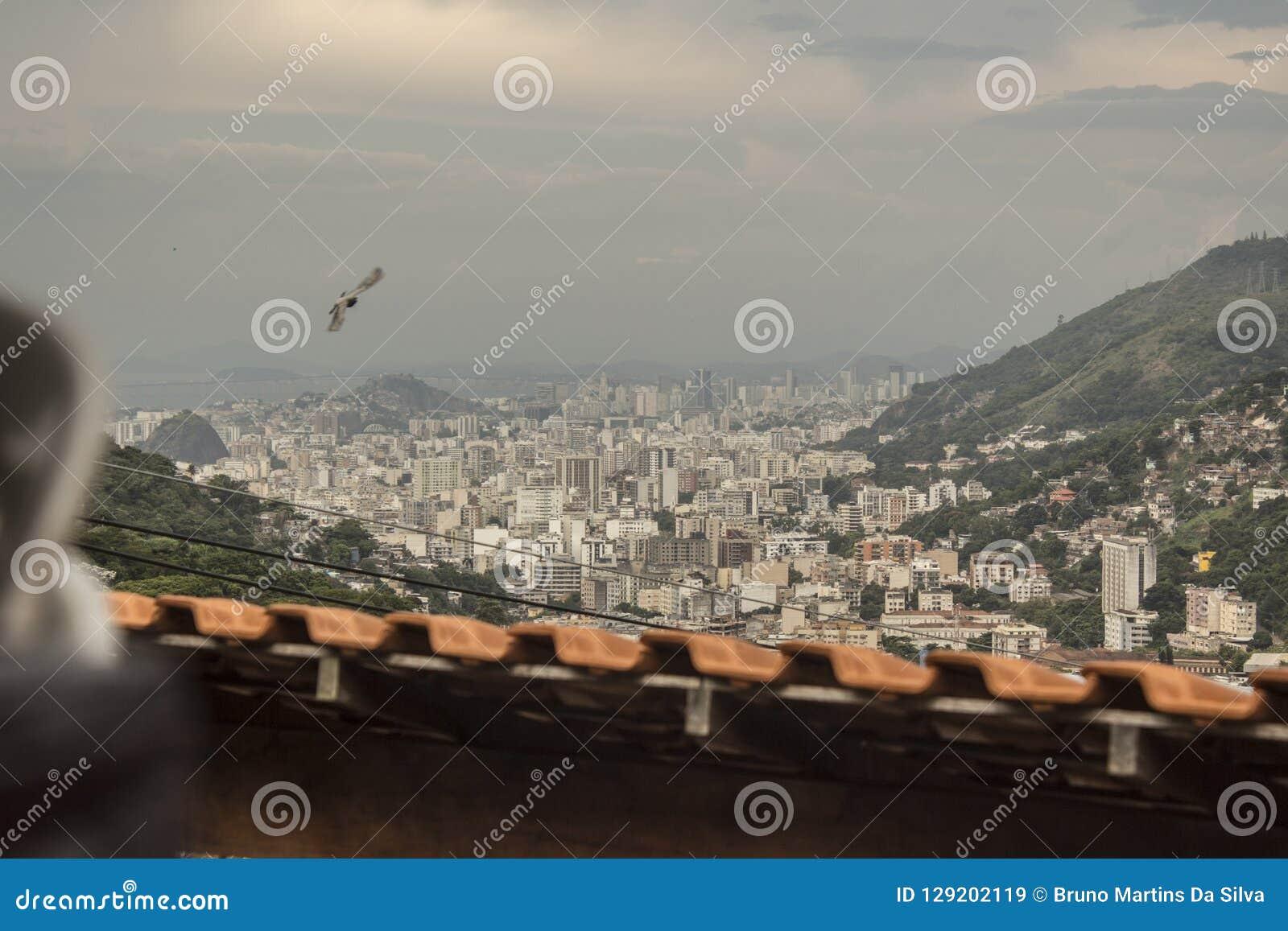 Details of Catrambi favela in Rio de Janeiro - brazil