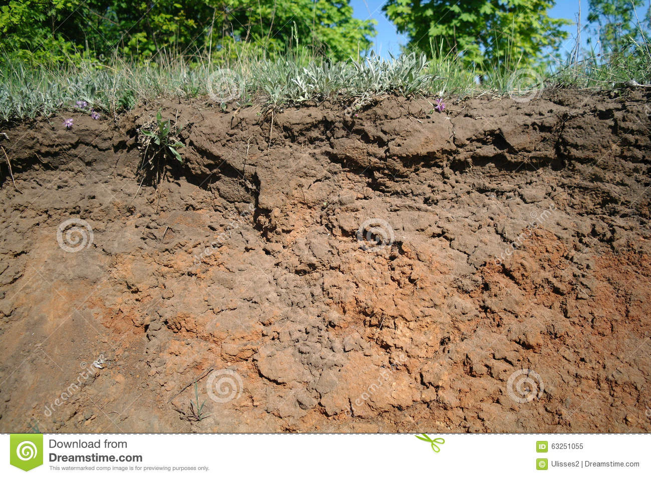 Details of layers of soil under ground surface stock photo for Soil details