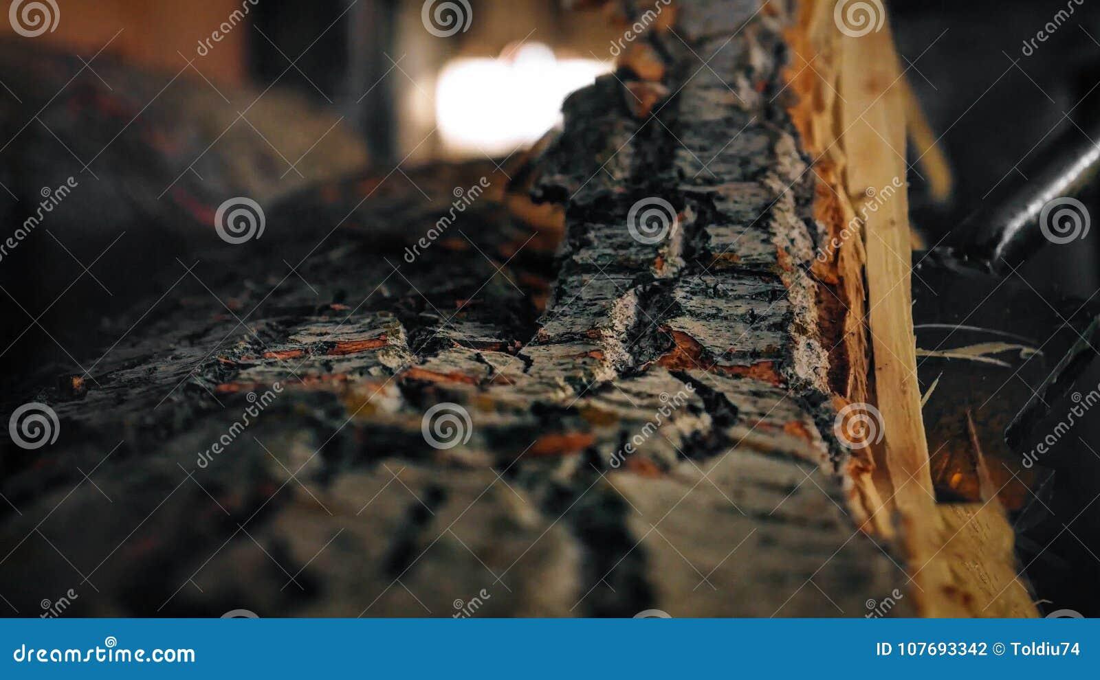 Details van de verwijdering van schors van login een zaagmolen
