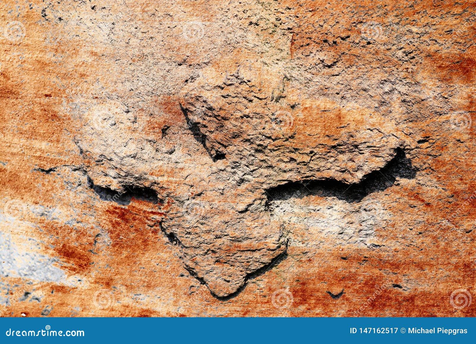 Detalhado perto acima da superf?cie de muros de cimento rachados e resistidos na alta resolu??o
