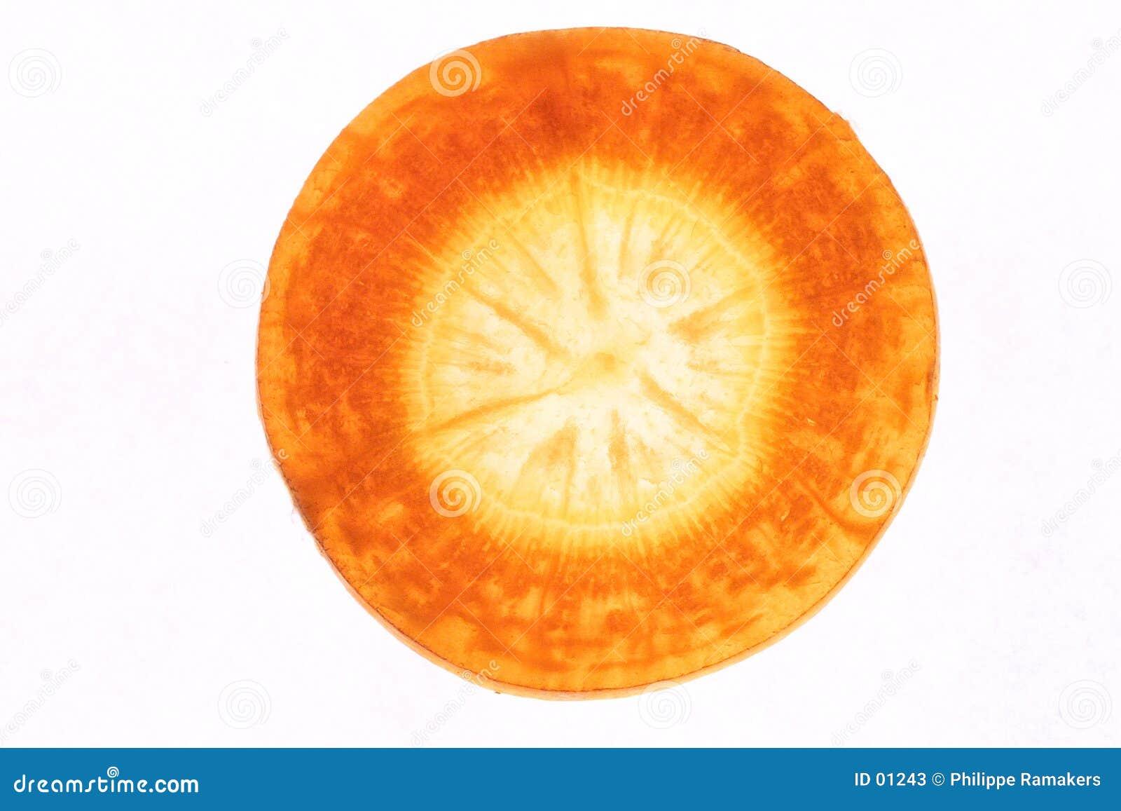 Detalhe da cenoura