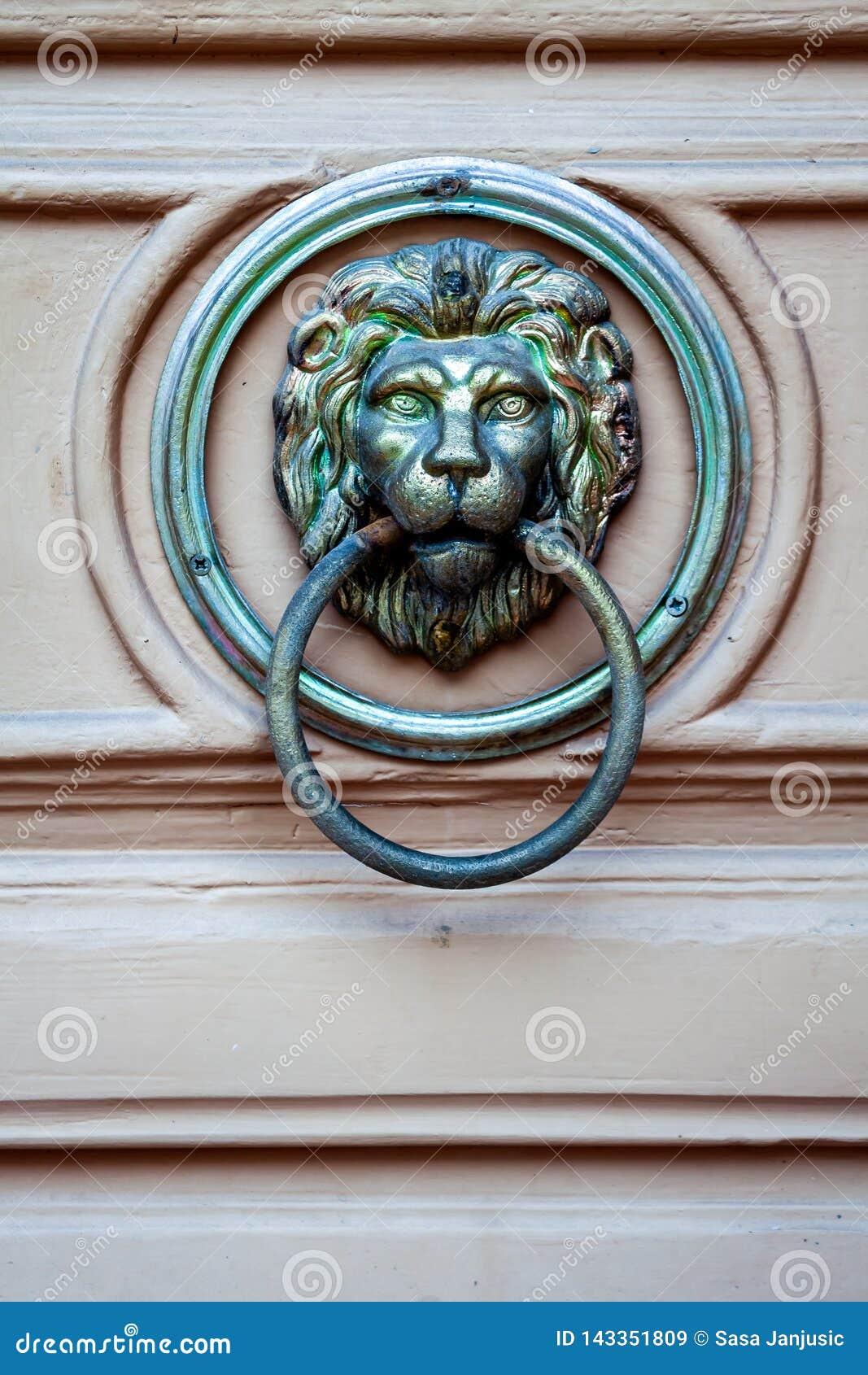 Detaljer på dörrlejonet