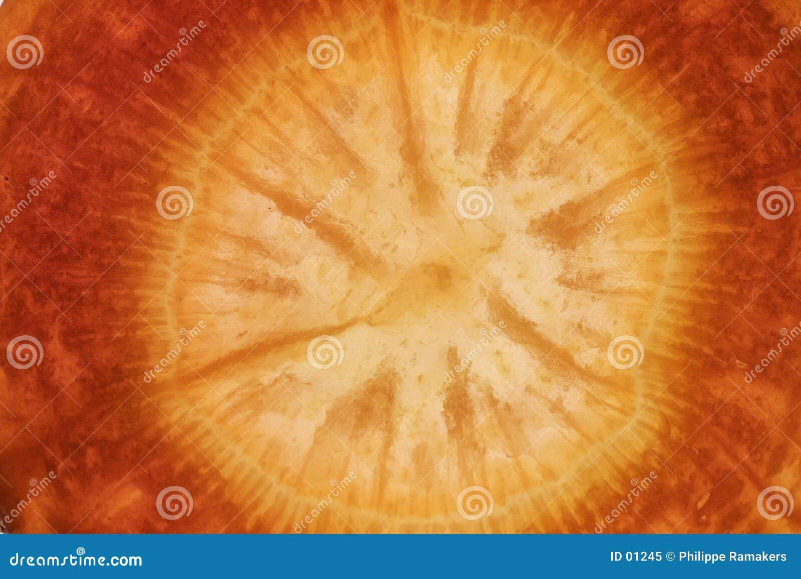Detalle de la zanahoria