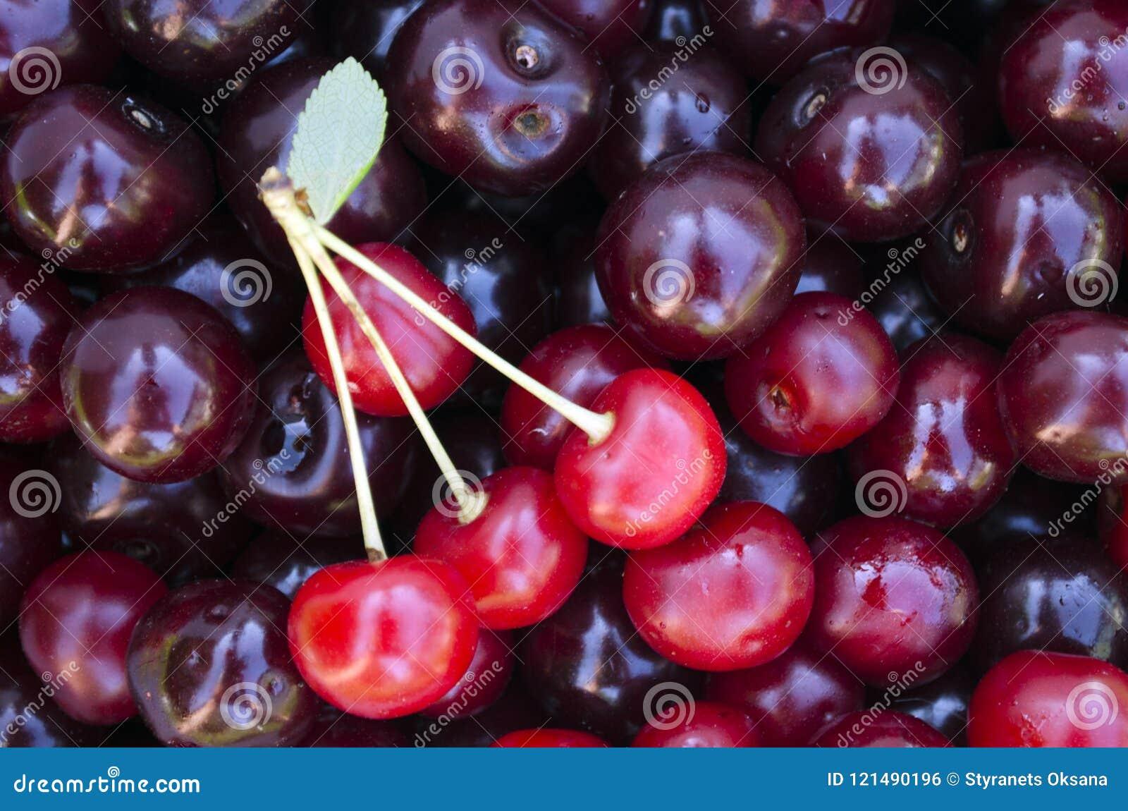 Detalle tirado de cerezas rojas