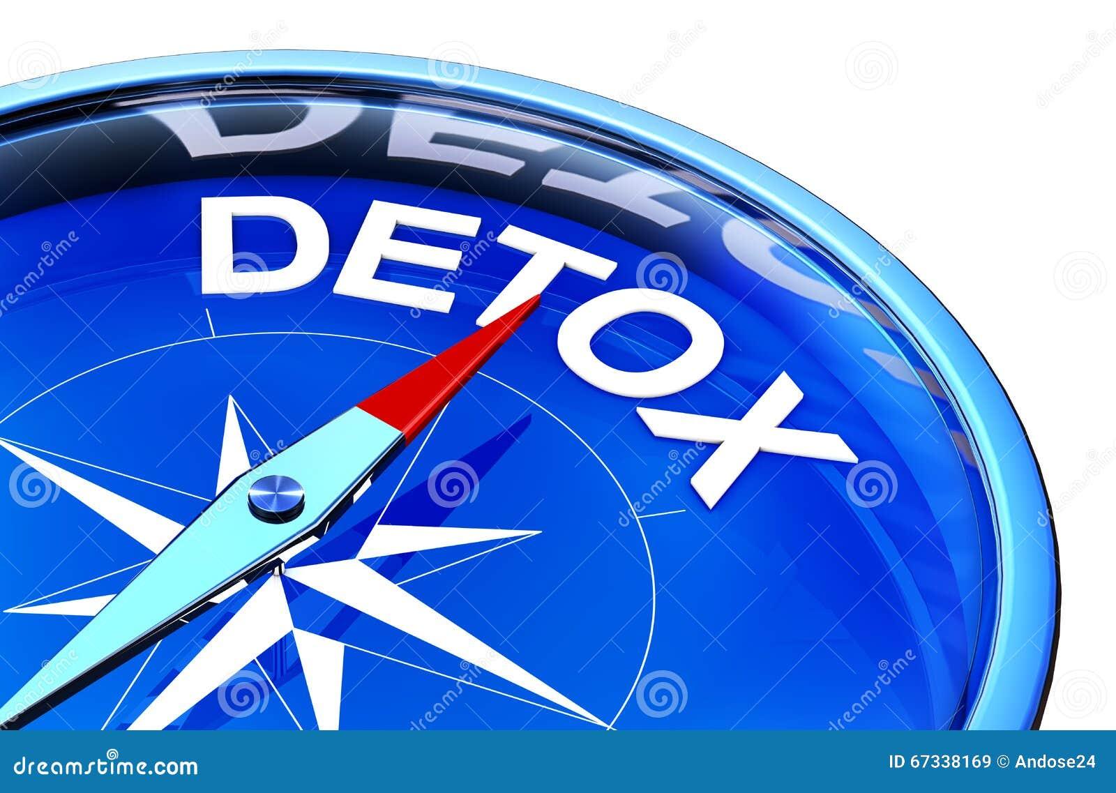 detox stock illustration image of detoxification liver