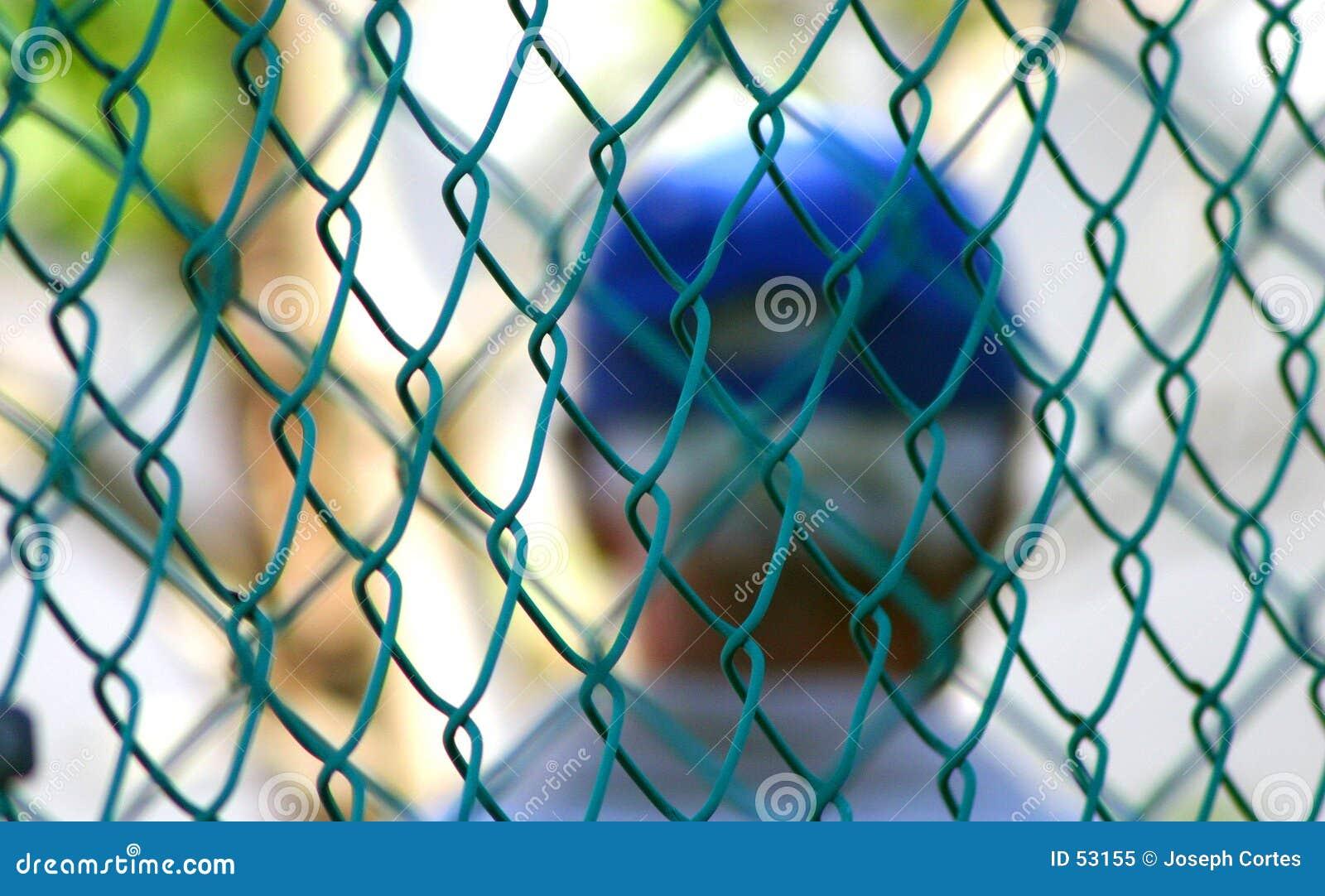 Detrás de la cerca