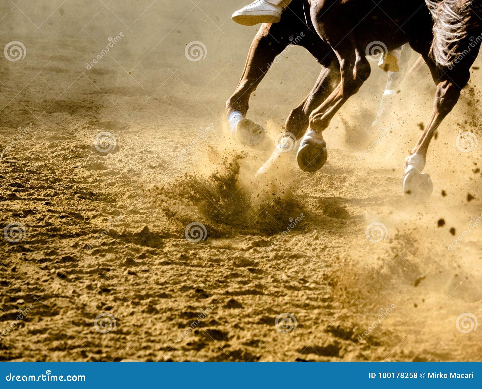 Dettagli di corsa di cavalli di Asti dei Di di Palio delle gambe galoppanti dei cavalli sull ippodromo