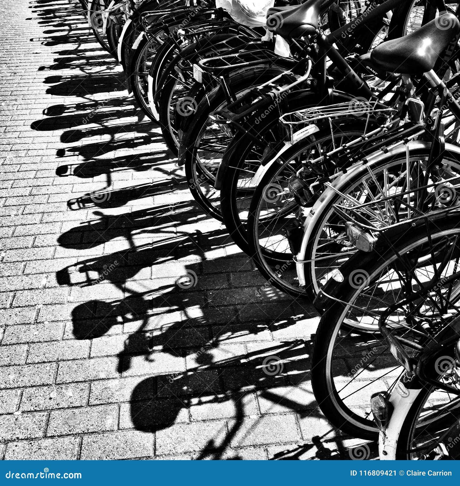 Dettaglio delle bici parcheggiate con le ombre sulla pavimentazione a Amsterdam