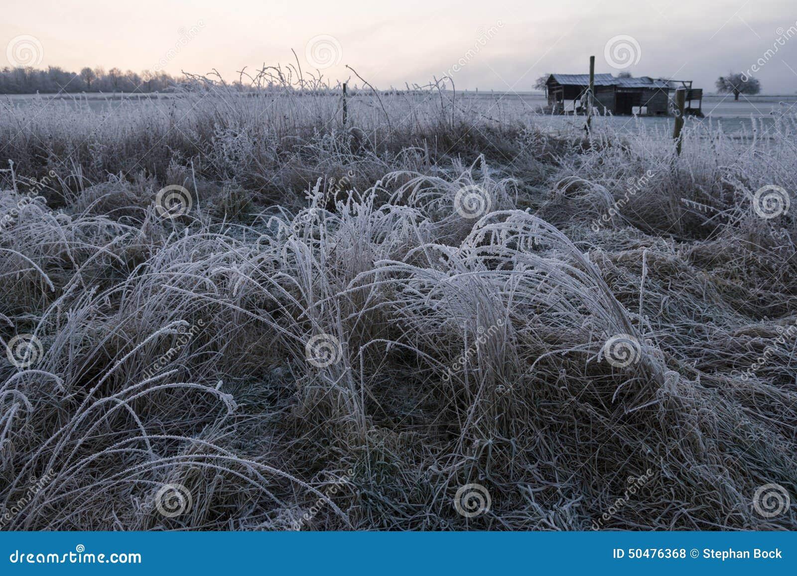 deutschland rheinland pfalz gr ser im winter reifbedeckt stockfoto bild 50476368. Black Bedroom Furniture Sets. Home Design Ideas
